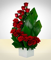 Flower Arrangements - Caracol de Rosas