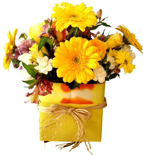 Send Flowers to :  Empreror