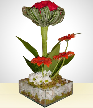 Send Flowers to :  Father s Day Flower Arrangement