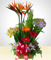Paradise birds - Spring Rustic Flower Arrangement 1