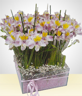 Alstroemerias - Glass Bowl Flower Arrangement with purple gel filling