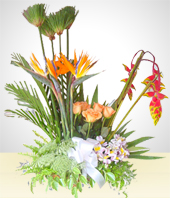 Condolences - Condolence Arrangement with Alstroemerias, Birds of Paradise and Roses