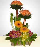 Gerbera daisies - Special Spring Flowers and Roses  Arrangement