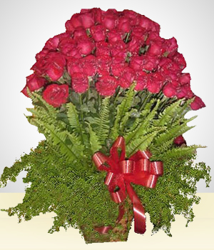 Deluxe Gifts - Scarlet Impact: 100 Roses Arrangement