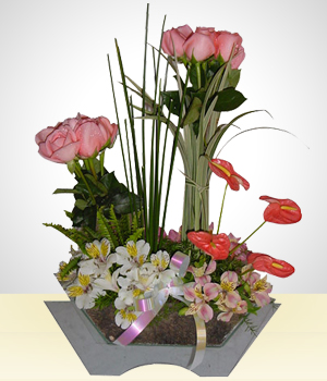 Send Flowers to :  Sunny Sentiments
