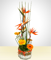 Wedding - Bird of Paradise & Gerberas