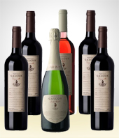 Wines & More - Set of 6 Delicious Wine Bottles
