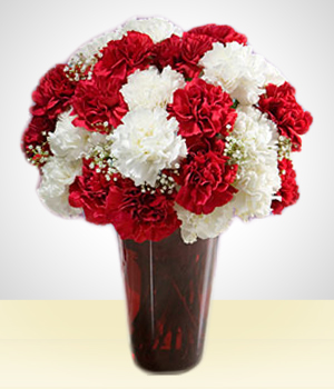 Christmas Arrangments - Merry Christmas Carnation Delight I