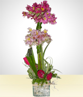 Flower Arrangements - Emotion: Astromelia Arrangement