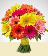 Spring Flowers - Mirage: Multicolored Gerbera Arrangement