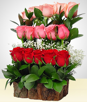 Send Flowers to :  Dreaming 15 Roses Water Fall