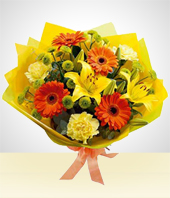 Spring Day - Spring Bouquet: Gerberas and Carnations