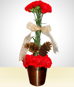Flowers Bolivia Flower delivery Send flowers to Bolivia Flower store in Bolivia - Christmas Arrangments | Mobile