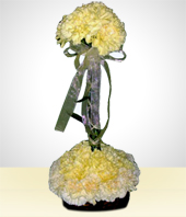 Flower Arrangements - Pure Carnations