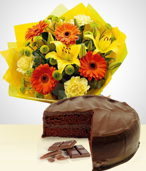 Send Flowers to :  Sweet Spring Combo: Gerberas Bouquet + Cake