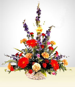 Flower Arrangements - Celestial: Multicolor Carnations