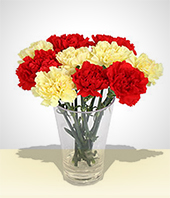 Bouquet - Colorful Carnations Bouquet