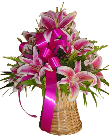 Send Flowers to :  Spring Lilies Arrangement