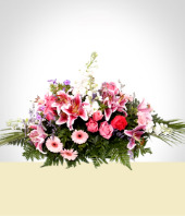 Condolences - Condolence Arrangement