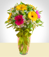 Birth - Gerberas and Astromelias Arrangement