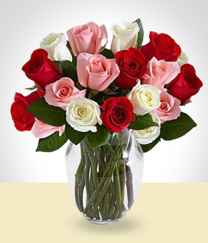 Send Flowers to :  Classic Arrangement