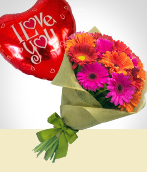 Send Flowers to :  Sweet Gerberas