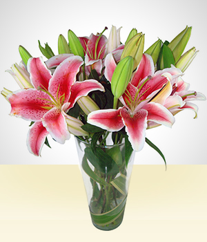 Birth - With Love: Pink Lilies