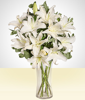 Birth - Tranquility: White Lily
