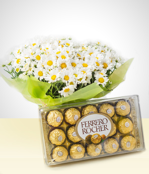 Daisies - Blooming: Daisies + Chocolates Bouquet