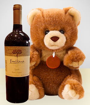Gifts for Men - Teddy + Wine