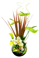 Flower Arrangements - Arrangement in fishbowl