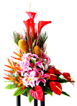 Flower Arrangements - Cartuchos Arrangement