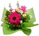 Ocassions - New!! Gerberas Bouquet