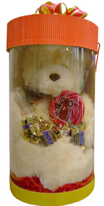 Plush Toys - Sof toy bear special box