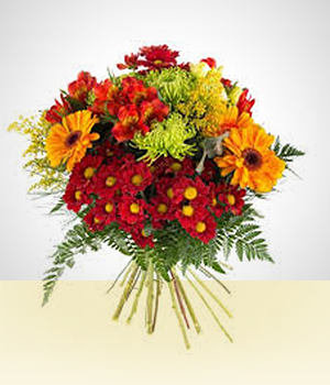 Gerbera daisies - Multicolor Bouquet