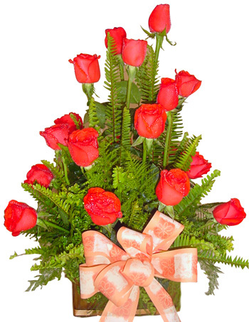 All ocassion - Red Rose Arrangement